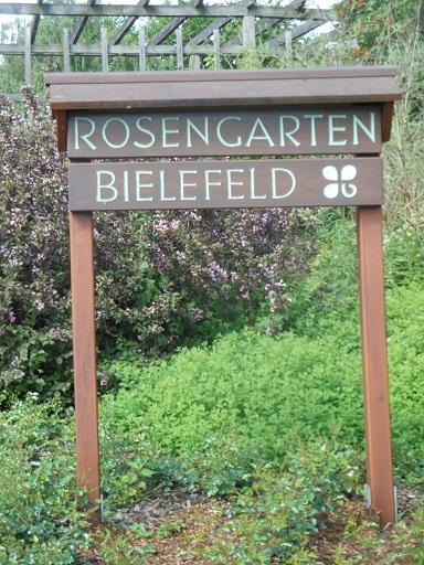 Bielefeld Rosengarten