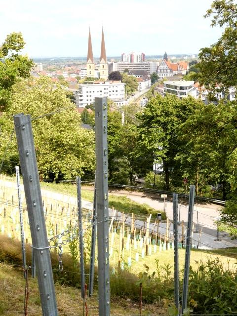 Bielefeld Johannisberg